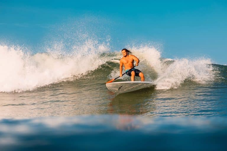 Paddle Boarding vs. Surfing